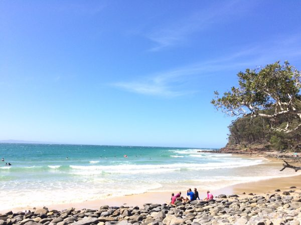 Noosa Best Of Little Cove Beach