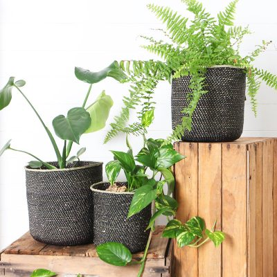 African Planter Baskets Black Collective Sol