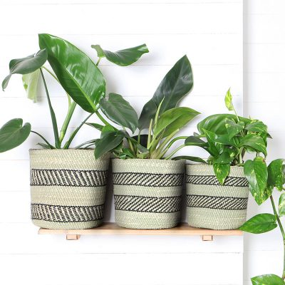 Fairtrade Planter Baskets Grass Natural Black Collective Sol