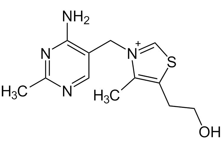 Thiamine molecular structure | Image