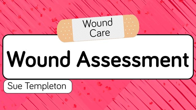 Image for Wound Assessment