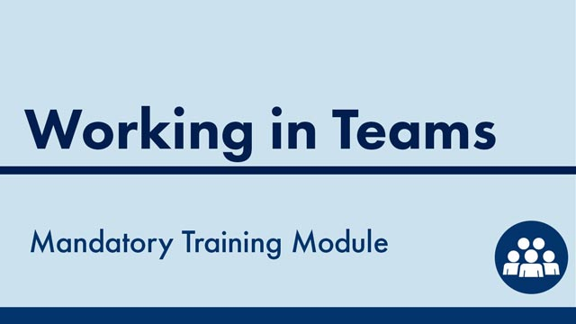 Image for Working in Teams