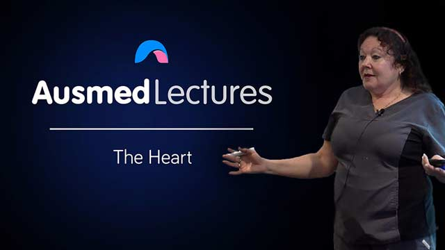 Cover image for lecture: The Heart