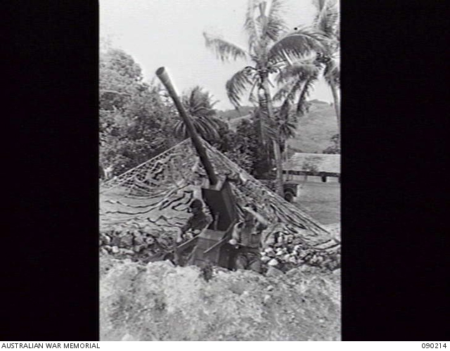 A camouflaged wooden gun on Goodenough Island