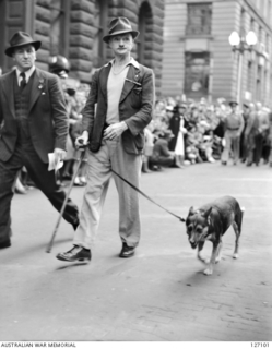 SYDNEY, NSW. 1946-04-25. FRANK FAYER A BLINDED DIGGER FROM THE ORIGINAL 3RD BATTALION, BEING LED BY HIS GUIDE DOG IN THE ANZAC DAY MARCH THROUGH THE CITY