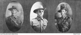 Studio portraits of three Davidson brothers.  Left, 1120 Private (Pte) Harold Alfred Davidson, 12th Light Horse Regiment, of Boggabilla, NSW;  centre, 48 Pte William Patrick Davidson, 26th ..