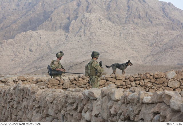 Members of MT-D, and their explosive detection dog, clearing the area of IEDs