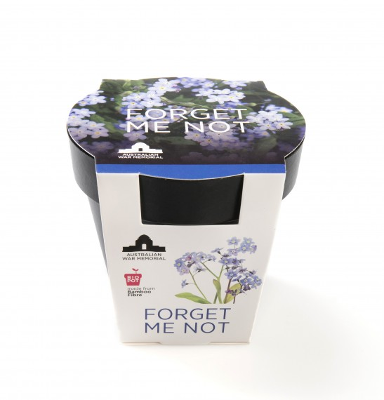 Grow-your-own seedling kit: Forget-me-not