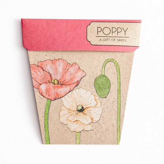 A Gift of Seeds: Poppy
