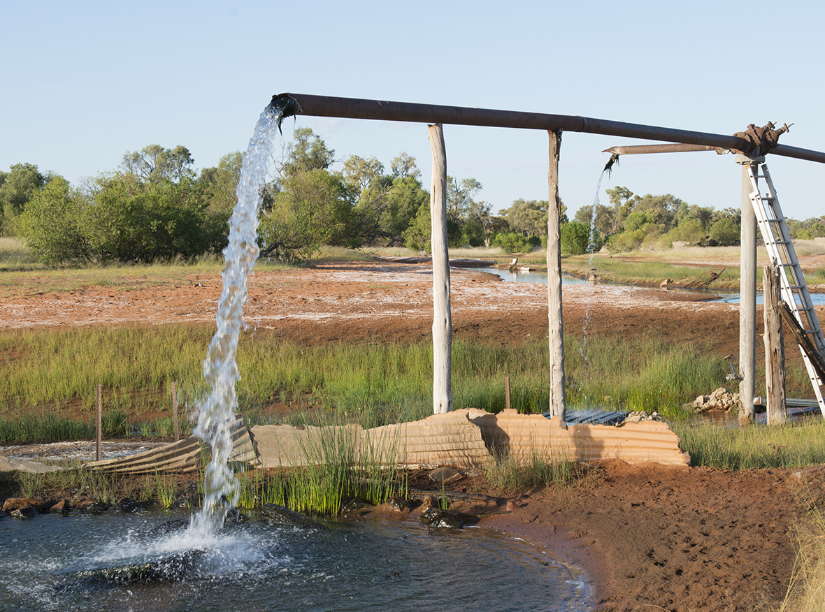 One of the existing free-flowing bores in the project area.