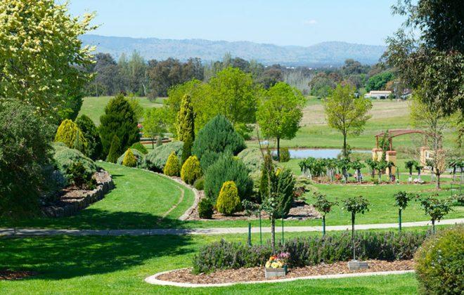 NSW crematorium glenmorus