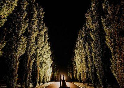 bespoke_topheader_4_Driveway