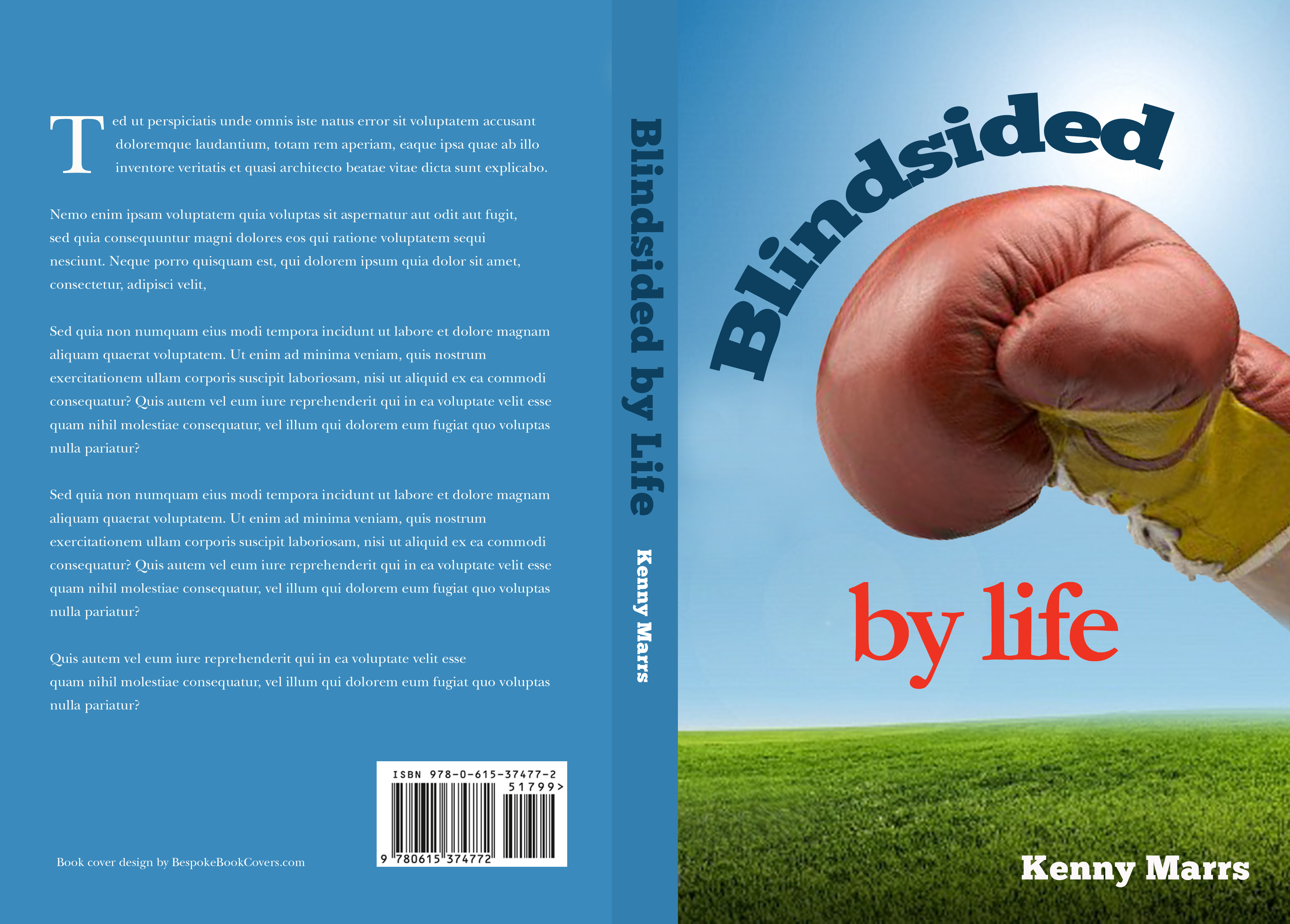 blindsided by life book cover