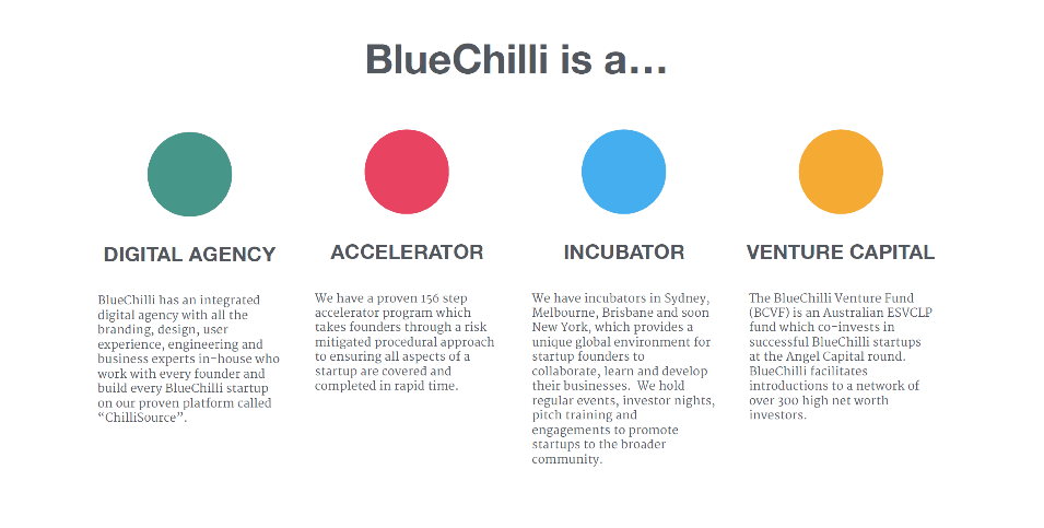 what-bluechilli-does