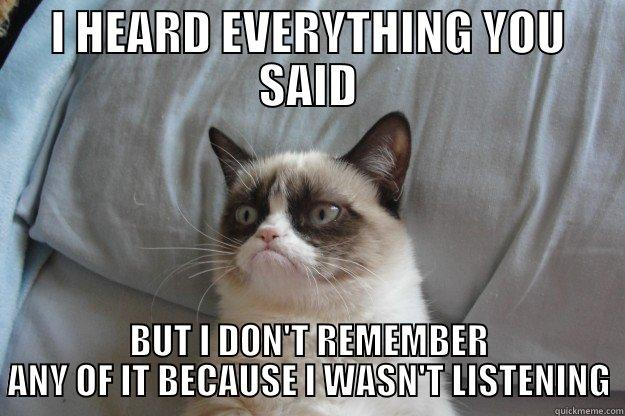 grumpy cat, mindfulness for founders