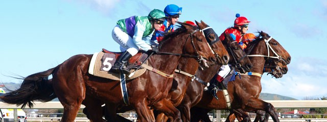 2014-11-04-Melb Cup
