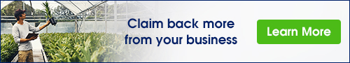 claim back more from your business