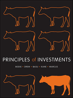Principles of Investment 1st Edition