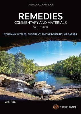 Remedies: Commentary and Materials 6e