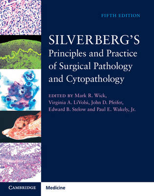 Silverberg's Principles and Practice of Surgical Pathology and Cytopathology 4 Volume Set with Online Access
