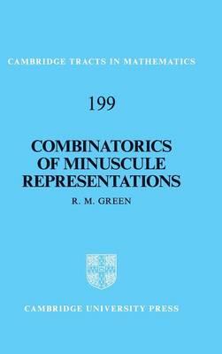 Combinatorics Minis Representations
