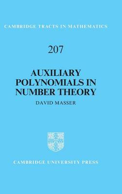 Auxiliary Polynomials in Number Theory