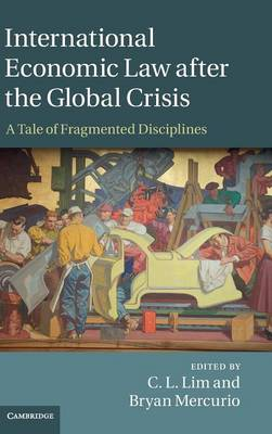 International Economic Law after the Global Crisis: A Tale of Fragmented Disciplines