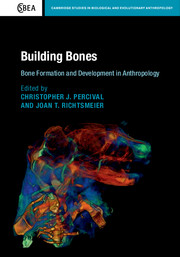 Building Bones: Bone Formation and Development in Anthropology