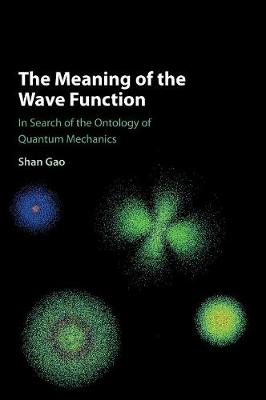 The Meaning of the Wave Function