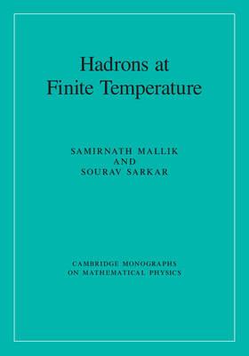 Hadrons at Finite Temperature