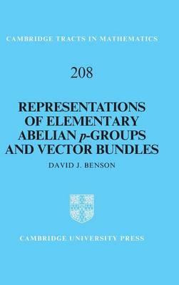 Representations of Elementary Abelian p-Groups and Vector Bundles