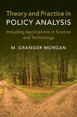 Theory and Practice in Policy Analysis: Including Applications in Science and Technology