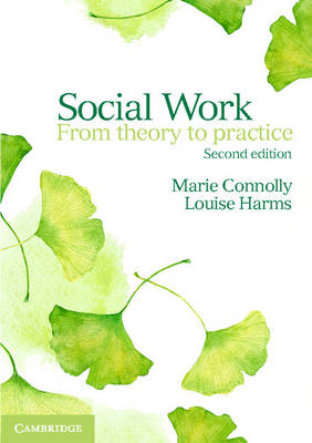 Social Work From Theory to Practice