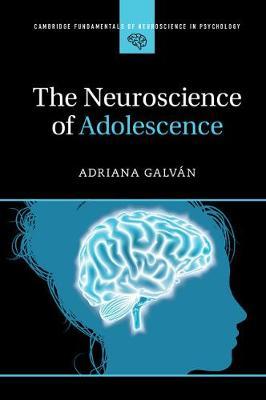 The Neuroscience of Adolescence