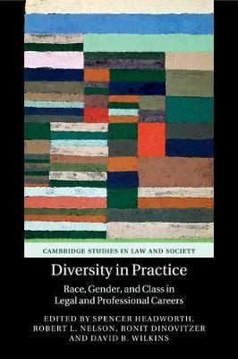 Diversity in Practice