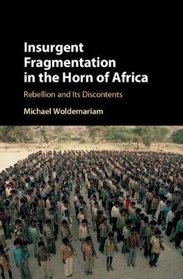 Insurgent Fragmentation in the Horn of Africa