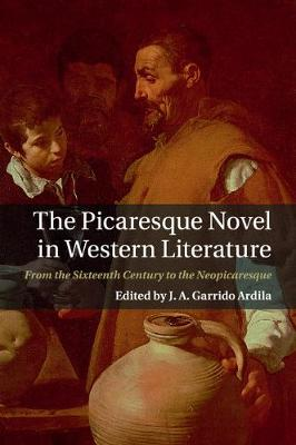 The Picaresque Novel in Western Literature: From the Sixteenth Century to the Neopicaresque