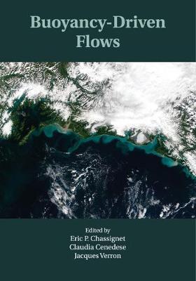 Buoyancy-Driven Flows