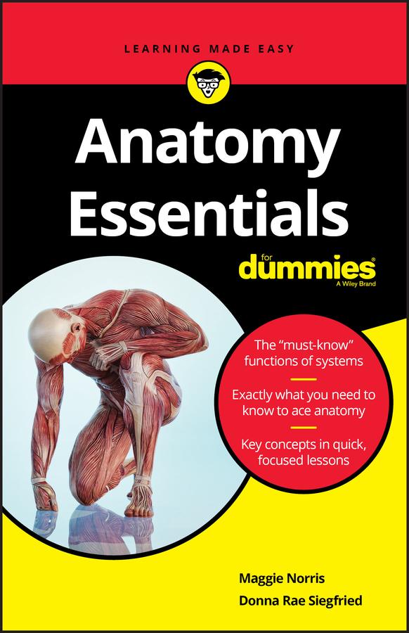 Anatomy Essentials For Dummies