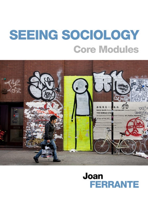 Seeing Sociology : Core Modules