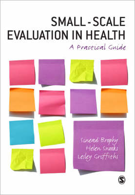 Small Scale Evaluation in Health: A Practical Guide