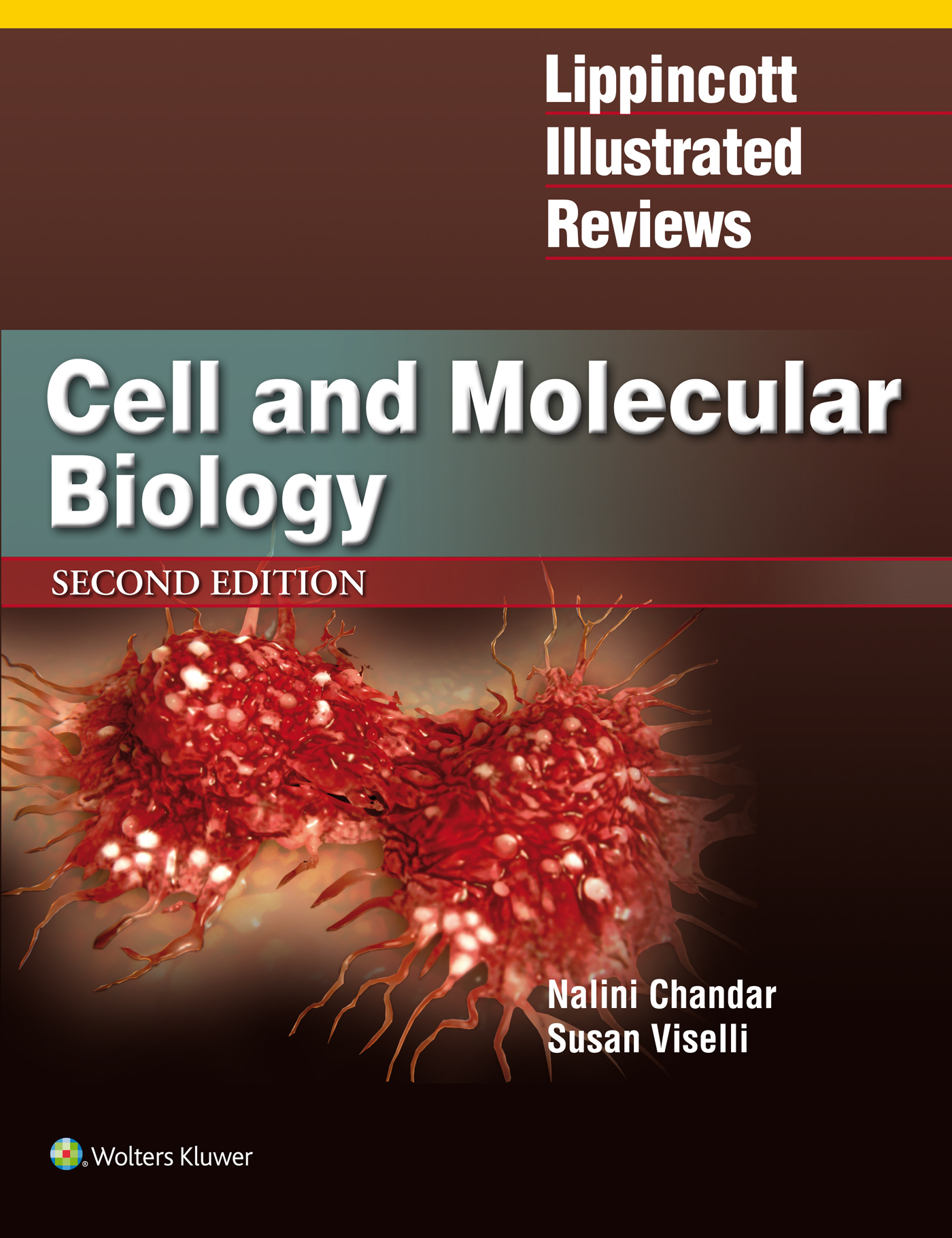 Lippincott's Illustrated Reviews: Cell and Molecular Biology