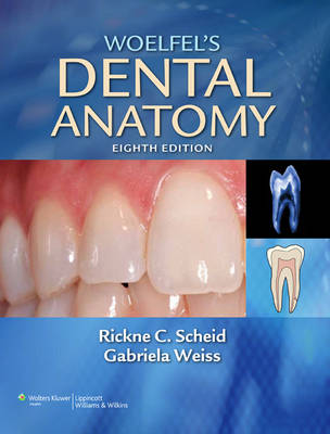 Woelfel's Dental Anatomy: Its Relevance to Dentistry