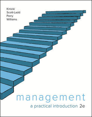 Management: A Practical Introduction 2e