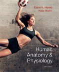 Human Anatomy and Physiology 8ed & Mastering A&P & Getting Ready for A&P