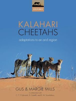 Kalahari Cheetahs