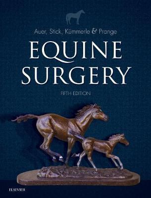 Equine Surgery