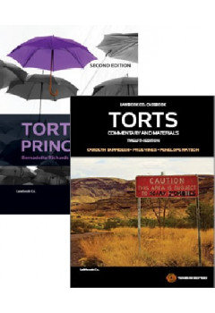 Torts:Commentary and Materials 12e/Tort Law Principles