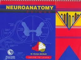Neuroanatomy Primer: Color to Learn