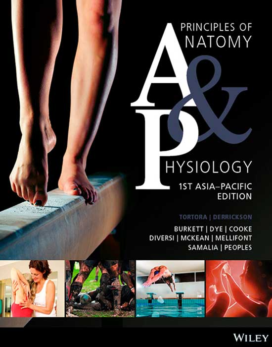 Principles of Anatomy & Physiology, 1st Asia-Pacific Edition